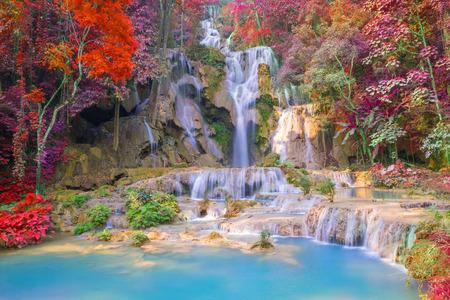 Waterval in het regenwoud (Tat Kuang Si Watervallen in Luang Prabang, Laos.)