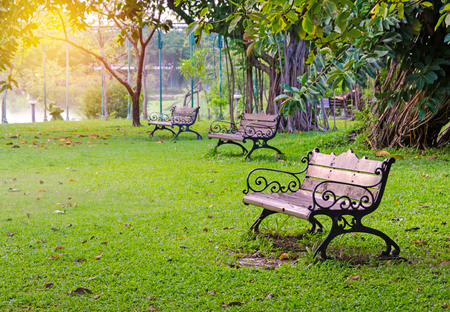green park: Benches in beautiful green park