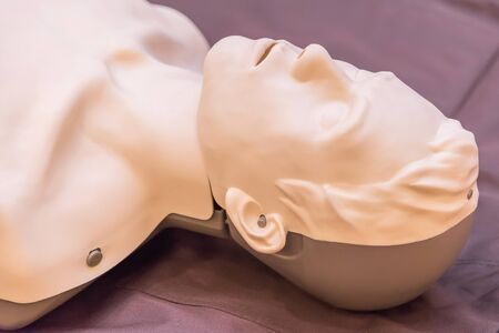 chest compression: modeling of dummy used in CPR training.