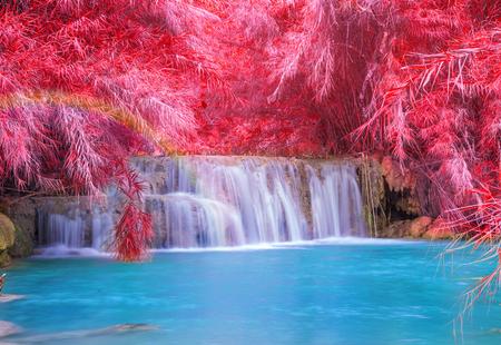 beautiful heaven: Waterfall in rain forest (Tat Kuang Si Waterfalls at Luang prabang, Laos.)