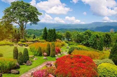 Beautiful garden of colorful flowers on hill.