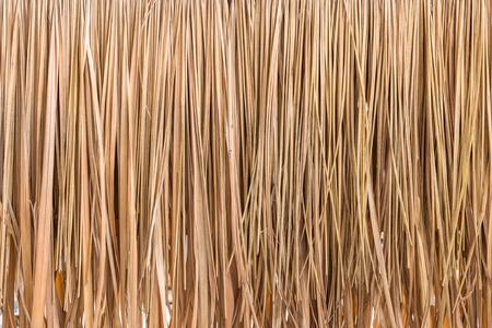 hojas secas: Fondo azotea de la paja, heno o fondo de hierba seca.