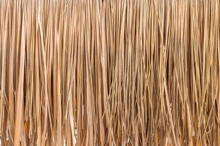 dry leaves: Thatch roof background, hay or dry grass background.