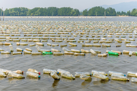 Shellfish farm from old plastic bottles in sea at Chanthaburi, Thailand.