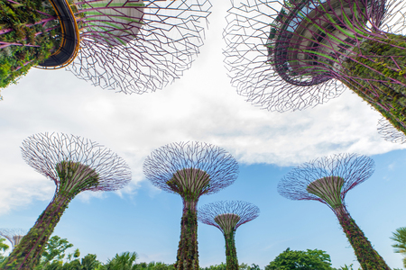 famous industries: SINGAPORE - FEBRUARY 14, 2017: Supertrees at Gardens by the Bay  landscape in Singapore. Editorial