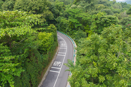top view of curving road with trees in a public park. Stock Photo
