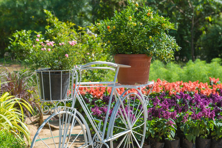 whimsy: Model of bicycle equipped with basket of flowers in the garden.