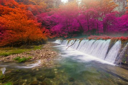 Waterfall in Golden whip stream at Zhangjiajie National Forest Park, Hunan, China.