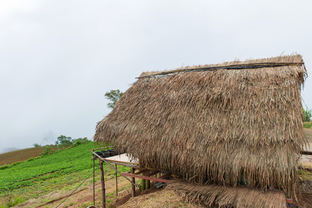 hut and house under mist in the morning at Phu Tub Berk, Petchabun Thailand. Banque d'images