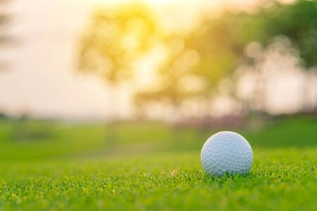 Golf ball on green grass ready to be shot at golf court.