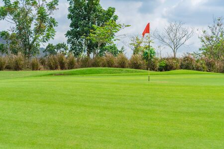 Golfcourse, Beautiful landscape of a golf court with trees and green grass. Stockfoto