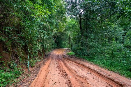 road wet muddy of backcountry countryside in rainy day. Stockfoto