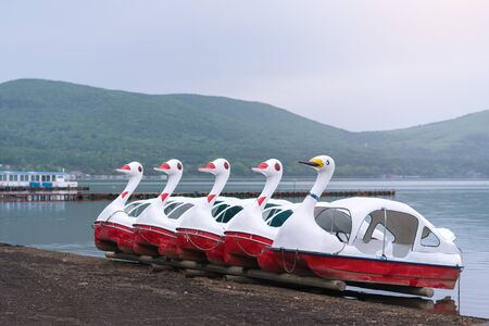 duck Pedal boats at Lake Kawaguchiko Mount Fuji is a popular recreational site for boating