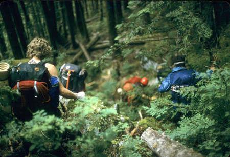 Bushwhacking - Climbers, descending thru steep brush,Southern Picketts, North Cascades National Park,Washington