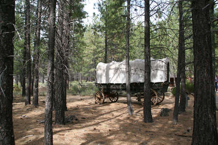 covered wagon: Covered wagon, 19th century homestead,   High Desert Museum, Central Oregon
