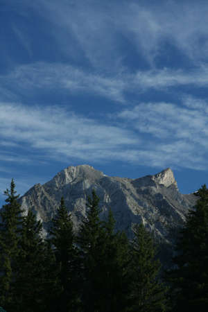lenticular: Kananaskis mountains; spruce, high cirrus clouds on deep blue sky; weather front moving in, lenticulars forming on peaks. Canadian Rockies,Kananaskis, Canmore, Banff, Alberta, Canada