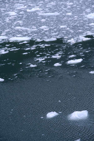 Abstract, brash ice forming at sundown in calm glacier bay, Strait of Magellan,  Patagonia, Chile