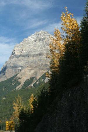 Stephen millones de toneladas, aspens Amarillo y las montañas, las nubes de luz azul profundo del cielo YOHO Parque Nacional Montañas Rocosas canadienses de Columbia Británica, Canadá Foto de archivo - 1142933