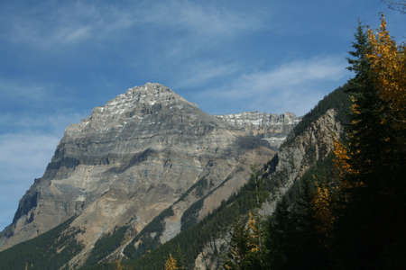 eminence: Mt Stephen, Aspens & mountains; light snow on layers of sedimentary mountain; blue sky with light cirrus cover Yoho National park, Canadian Rockies  British Columbia, Canada   Stock Photo