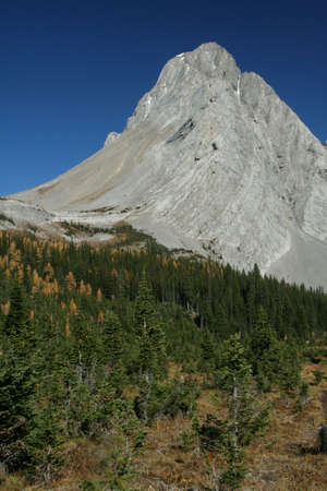 canmore: Mt Birdwood, showing deformation of upthrust rock formations,  Burstall pass,Canadian Rockies,Kananaskis, Canmore, Banff, Alberta, Canada