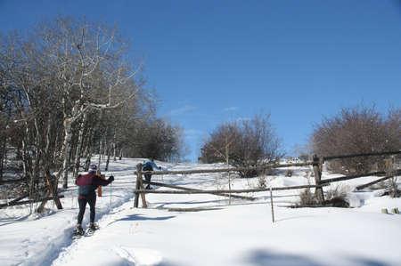 cordillera: Snowshoe hiker with wooden rail fence & bare aspens,  Cordillera, Colorado