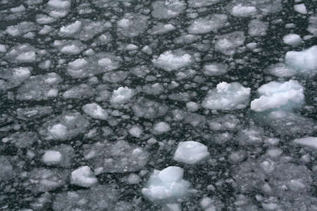 brash: Abstract, brash ice forming at sundown in calm glacier bay, Strait of Magellan,  Patagonia, Chile