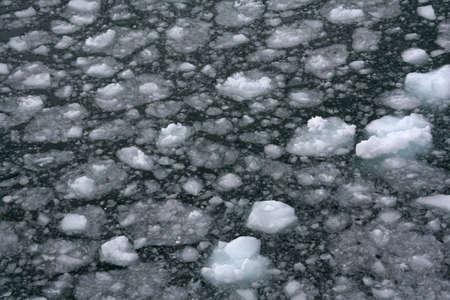 strait of magellan: Abstract, brash ice forming at sundown in calm glacier bay, Strait of Magellan,  Patagonia, Chile