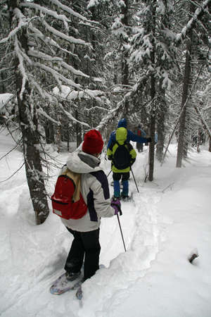 snowshoe: White parka, snowshoe hikers in woods,  Shrine pass, near Vail Pass,  Colorado   Stock Photo