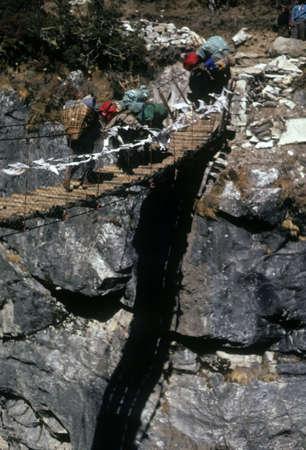 sherpa: Sherpa and yak crossing suspension bridge crossing, narrow gorge near Pangboche, Khumbu Himal,  Nepal, Asia