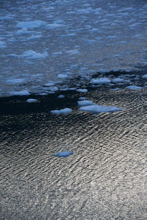 brash: Abstract, brash ice forming at sundown in calm glacier bay, Strait of Magellan,  Patagonia, Chile Stock Photo