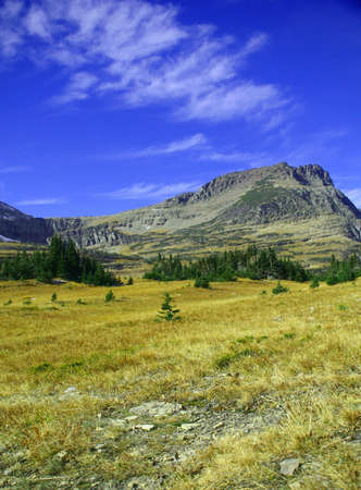 eminence: Logan pass,Bearhat Mountain,meadow in foreground, Glacier National Park,  Montana Stock Photo
