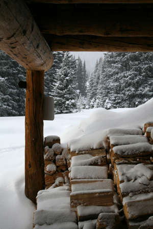 Wood pile under mountain hut,  Shrine pass, near Vail Pass,  Colorado