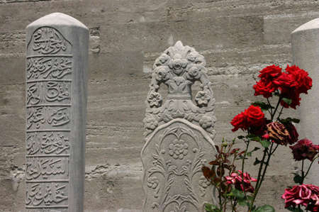 suleyman: Red roses & tombstones, Islamic cemetery Suleymanie Mosque Istanbul Turkey