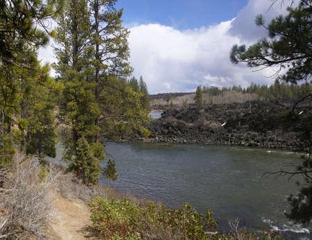 ponderosa: Panorama, ponderosa pines and river canyon,  Deschutes River trail, Central Oregon   Stock Photo