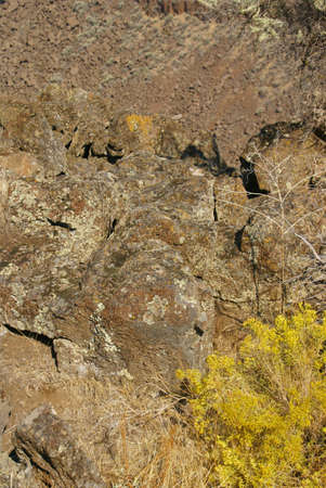 talus: Desierto de los �rboles y los acantilados de basalto y el astr�galo de la antigua corriente de lava, Crooked Ca��n del R�o, Central Oregon