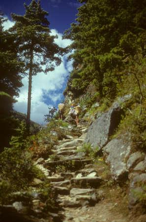 Porters on steep trail to Namche Bazar,  Khumbu Himalaya, Nepal, Asia