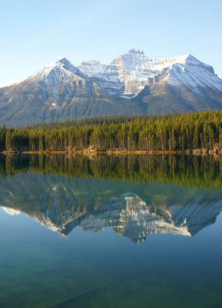 Reflections of mountain and forest in lake,Columbia Icefield Parkway,Alberta, Canada