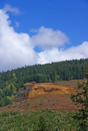 oregon cascades: Clear cut logging slope,  just outside Willamette National Forest,  Central Oregon Cascades