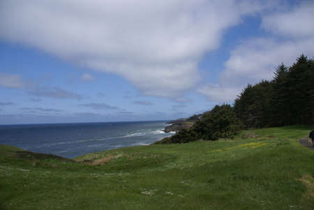 Rolling green meadows and Pacific Ocean,  near Otter Rocks,  Oregon Coast
