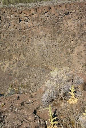 talus: Desierto de arbustos y acantilados de basalto y talud del flujo de lava antiguo, ca��n del R�o Crooked, Central Oregon
