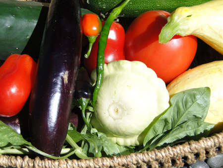 bounty: Summer bounty - Fresh vegetables in a woven basket   Seattle garden, Pacific Northwest                     Stock Photo