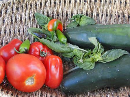 bounty: Verano recompensa - FreshAIR verduras en una canasta tejida jard�n de Seattle, noroeste