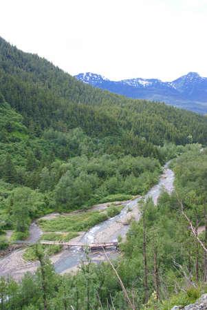 숲과 산의 흐름, 주노 트레일, 주노, 알래스카 스톡 콘텐츠