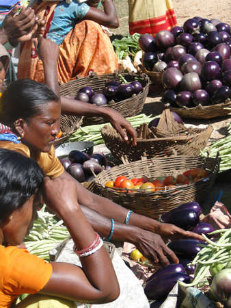 ORISSA, INDIA - NOV 11 - Women selling eggplants and other fresh vegetables   on Nov 11, 2009,  in Chatikona market, Orissa, India                         Stock Photo - 7007344
