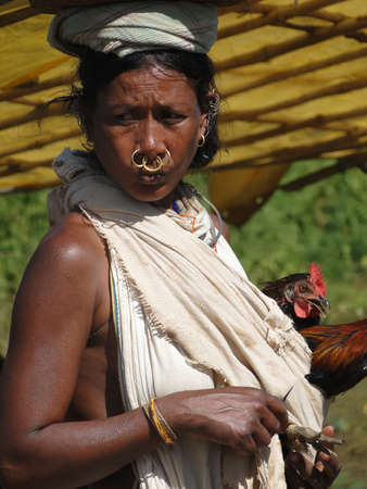 nosering: ORISSA,  INDIA - Nov 11 -Indian tribal woman carries her chickens to market on Nov 11, 2009 in Orissa, India                       Editorial