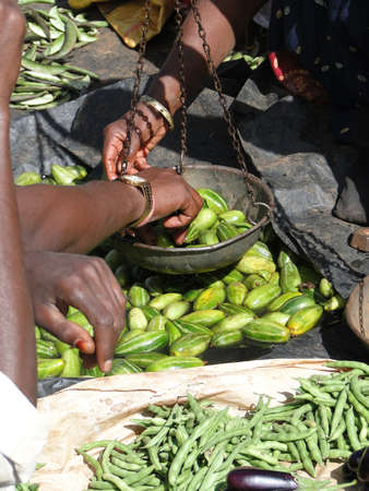 cucumbers: Indian villagers sell cucumbers