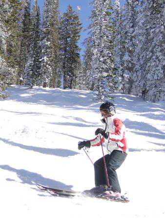 STEAMBOAT SPRINGS, COLORADO - 30 de JAN - Lone esquiador teje su camino a través de Álamos de invierno desnuda sobre el 30 de enero de 2010, en Steamboat Springs, Colorado  Foto de archivo - 7137971