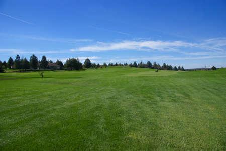 Golf course, green fairway, blue sky,Eagle Crest Resort Golf Course,Central Oregon  Archivio Fotografico