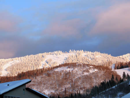 Brilho alpino na área de esqui de Steamboat Springs, após o pôr do sol do Colorado Foto de archivo - 9801712