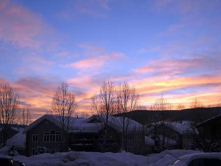 Puesta de sol con álamos en invierno desnudos, Steamboat Springs, Colorado Foto de archivo - 9972161